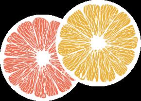 Grapefruit Scheiben