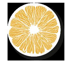 Grapefruit Scheibe gelb