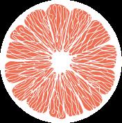 Grapefruit Scheibe Orange